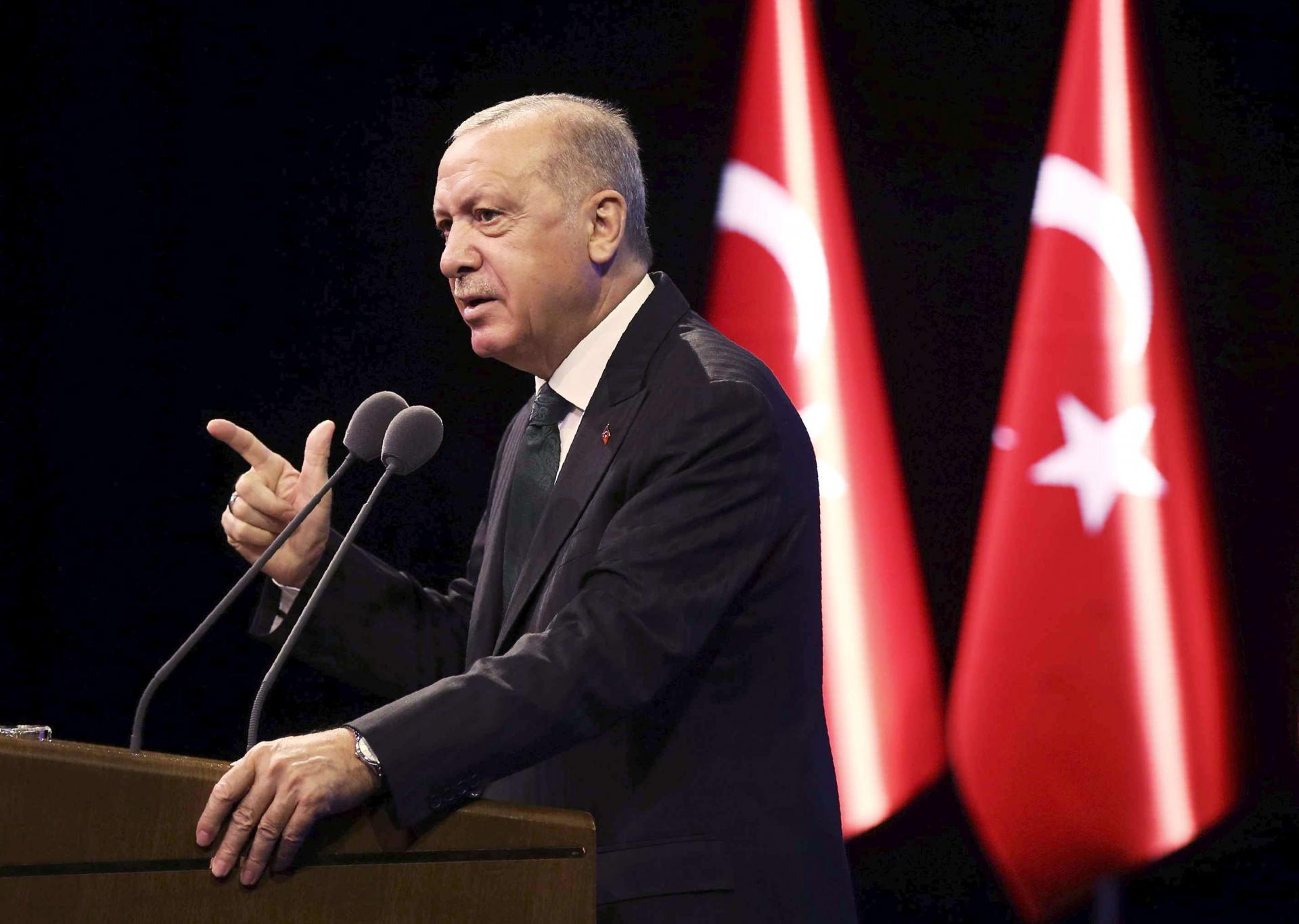 صحبتهای اردوغان مغایر منشور سازمان ملل است