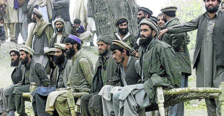 طاهری: گستره شبکه القاعده با طالبان و داعش قابل قیاس نیست