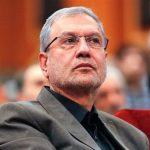 آمار سخنگوی دولت از ردصلاحیتهای گسترده انتخابات شوراها