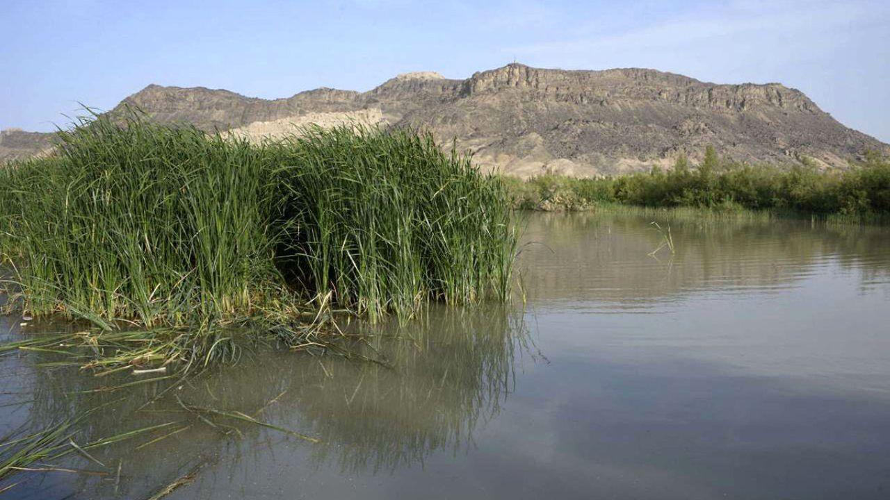 هامون خشکشده، زیر بار دیپلماسی