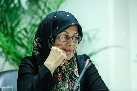 آذر منصوری: برگزاری انتخابات پرشور و با مشارکت بالا از دستور کار نظام خارج شده است