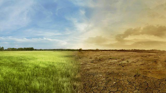آماده زندگی با خشکسالی شوید